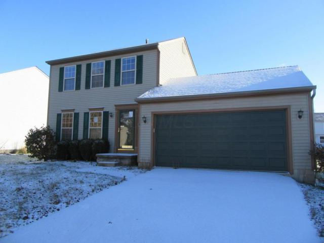 838 Buehler Drive, Delaware, OH 43015 (MLS #217043194) :: RE/MAX ONE