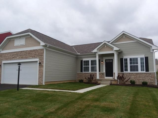 213 Weeping Willow Run Drive #207, Johnstown, OH 43031 (MLS #217043223) :: The Raines Group