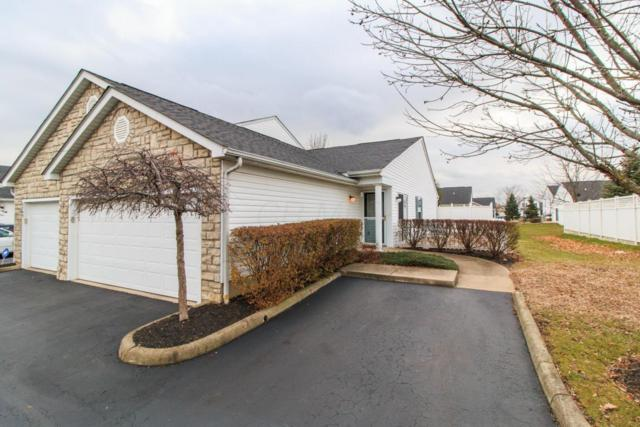 6747 Hamler Drive 30E, Canal Winchester, OH 43110 (MLS #217043268) :: RE/MAX ONE