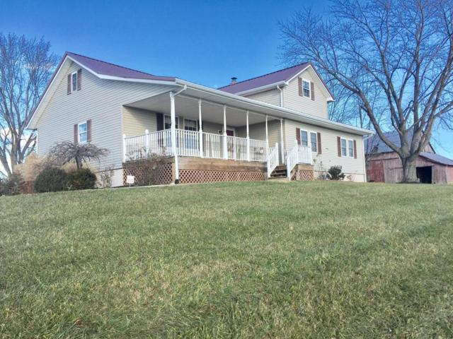 11162 Dingess Road, Circleville, OH 43113 (MLS #217043273) :: The Mike Laemmle Team Realty