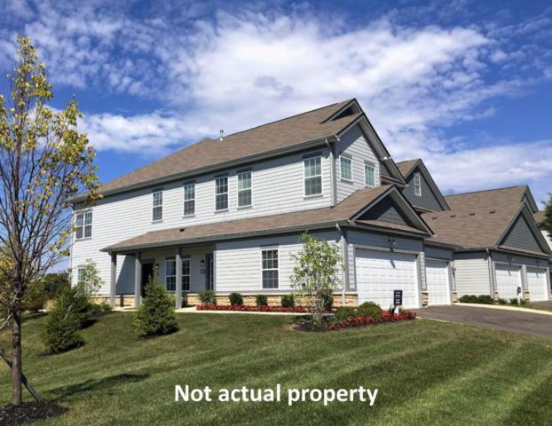 495 Wintergreen Way, Lewis Center, OH 43035 (MLS #217043502) :: The Clark Group @ ERA Real Solutions Realty