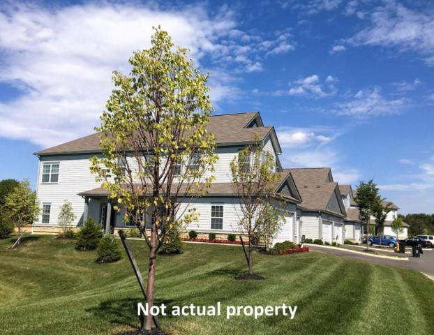 499 Wintergreen Way, Lewis Center, OH 43035 (MLS #217043503) :: Marsh Home Group