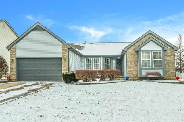 3226 Summer Glen Drive, Grove City, OH 43123 (MLS #217043515) :: RE/MAX ONE