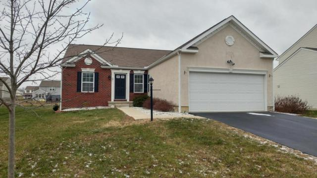181 Spring Flower Way, Etna, OH 43062 (MLS #217043559) :: RE/MAX ONE