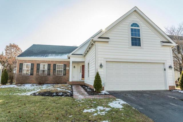 247 Chasely Circle, Powell, OH 43065 (MLS #217043594) :: The Mike Laemmle Team Realty
