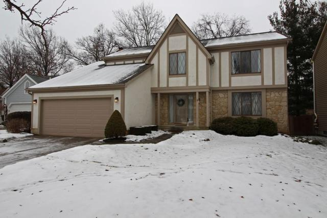 8900 Cornwallis Court, Powell, OH 43065 (MLS #218001233) :: Signature Real Estate