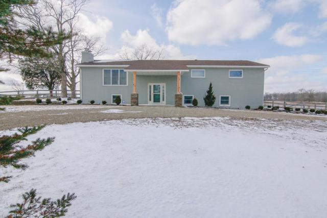 20916 State Route 245, Marysville, OH 43040 (MLS #218003057) :: The Clark Group @ ERA Real Solutions Realty