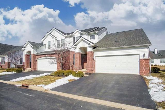 3260 Belstone Drive, Grove City, OH 43123 (MLS #218003861) :: RE/MAX Revealty