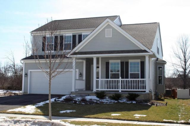 8691 Crooked Maple Drive, Blacklick, OH 43004 (MLS #218003865) :: Susanne Casey & Associates