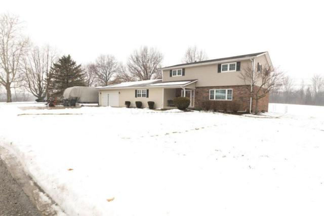 356 Buena Vista Drive, Johnstown, OH 43031 (MLS #218004064) :: The Clark Group @ ERA Real Solutions Realty