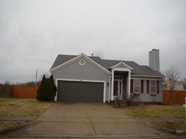 66 Ashton Drive, Ashville, OH 43103 (MLS #218004161) :: Berkshire Hathaway Home Services Crager Tobin Real Estate