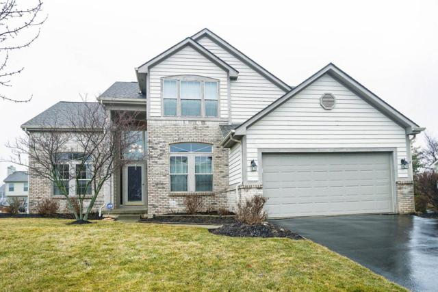 2249 Halma Court, Lewis Center, OH 43035 (MLS #218004231) :: RE/MAX Revealty