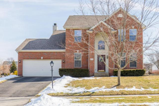 2174 Ben Brush Place, Lewis Center, OH 43035 (MLS #218004686) :: Julie & Company