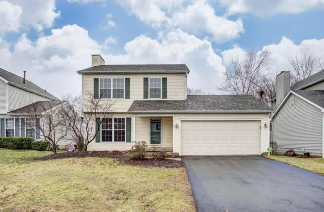 6129 Woodsboro Drive, Columbus, OH 43228 (MLS #218004915) :: RE/MAX Revealty