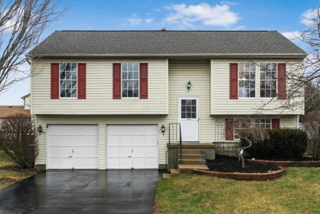 5794 Saucony Drive, Hilliard, OH 43026 (MLS #218004935) :: Julie & Company