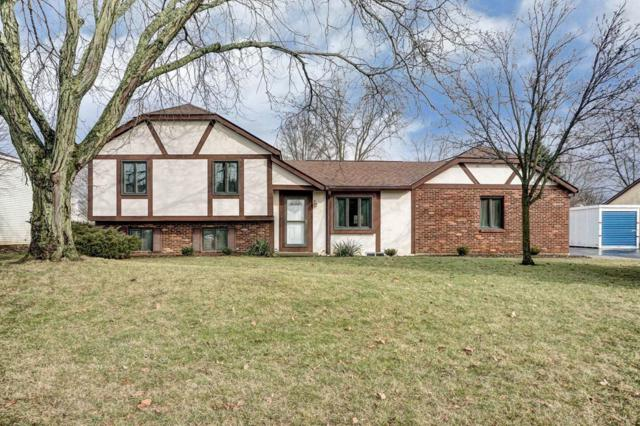 1208 Youngland Drive, Columbus, OH 43228 (MLS #218004936) :: Julie & Company