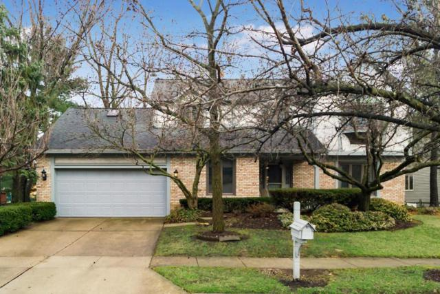 5156 Deerskin Drive, Westerville, OH 43081 (MLS #218005124) :: The Clark Group @ ERA Real Solutions Realty