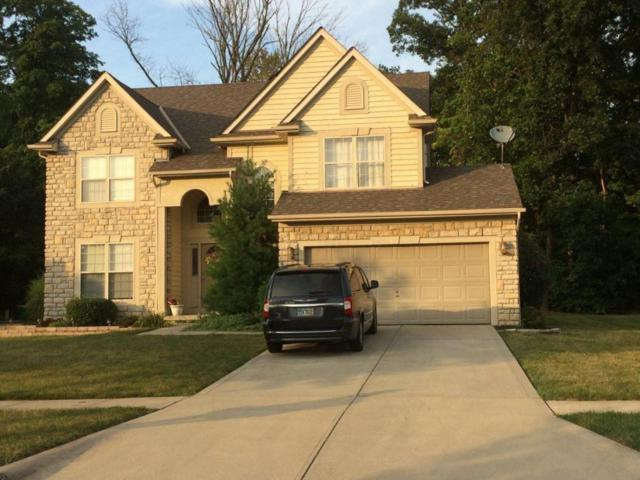 6694 Estate View Drive N, Blacklick, OH 43004 (MLS #218006014) :: Berkshire Hathaway Home Services Crager Tobin Real Estate
