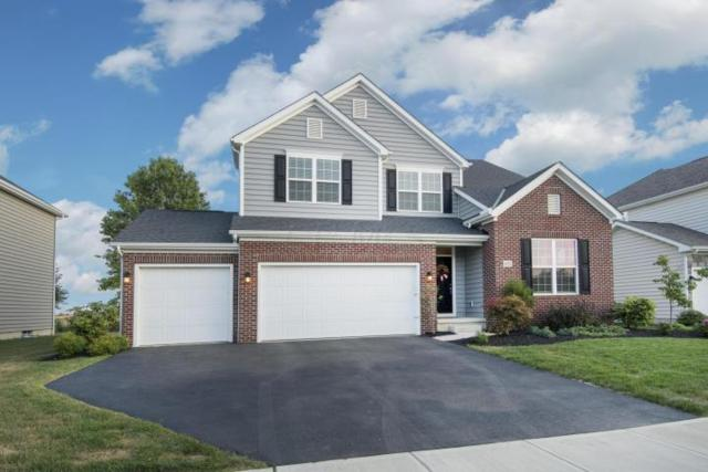 438 Red Stag Road, Delaware, OH 43015 (MLS #218006503) :: Berkshire Hathaway Home Services Crager Tobin Real Estate