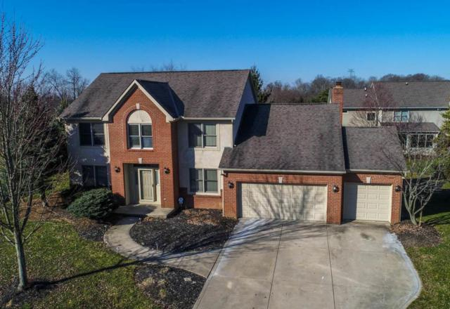8781 Winnoch Court, Dublin, OH 43017 (MLS #218006909) :: Berkshire Hathaway Home Services Crager Tobin Real Estate