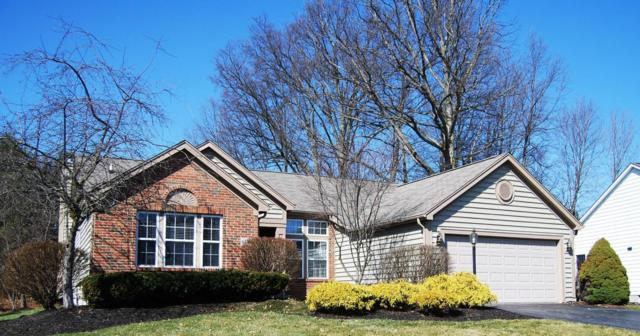 6316 Commonwealth Drive, Westerville, OH 43082 (MLS #218006947) :: Berkshire Hathaway Home Services Crager Tobin Real Estate
