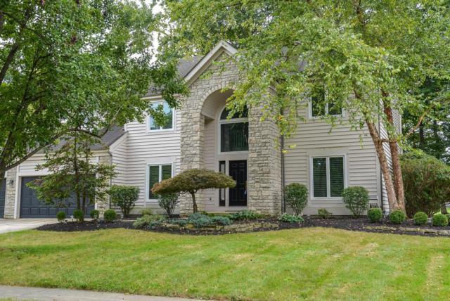 1287 Harrison Pond Drive, New Albany, OH 43054 (MLS #218006999) :: Susanne Casey & Associates