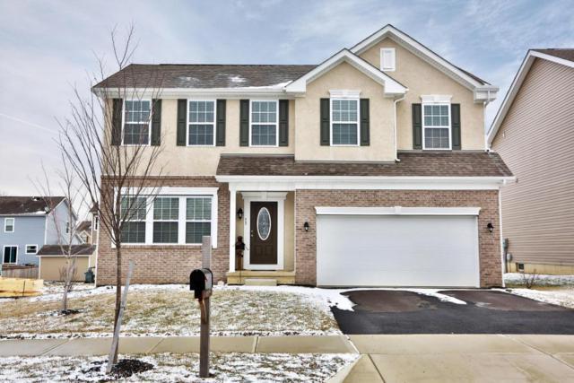 53 Carolyn Lane, Delaware, OH 43015 (MLS #218007547) :: Susanne Casey & Associates