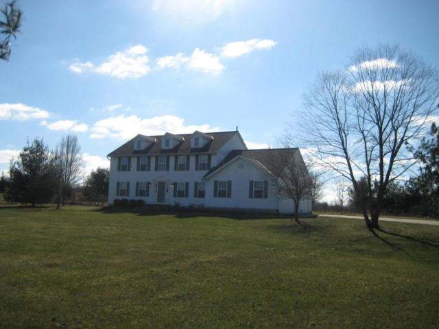 9300 Cheshire Road, Sunbury, OH 43074 (MLS #218007668) :: The Clark Group @ ERA Real Solutions Realty