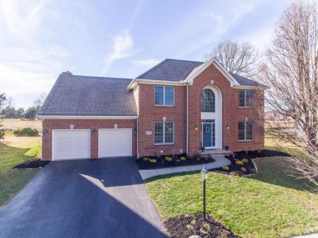 6955 Kindler Drive, New Albany, OH 43054 (MLS #218007934) :: RE/MAX ONE