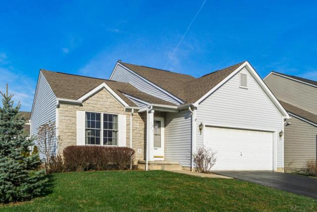 2073 Santuomo Avenue, Grove City, OH 43123 (MLS #218008253) :: The Clark Group @ ERA Real Solutions Realty