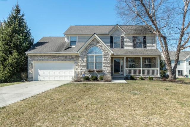 6428 Riviera Court, Westerville, OH 43082 (MLS #218008426) :: The Columbus Home Team