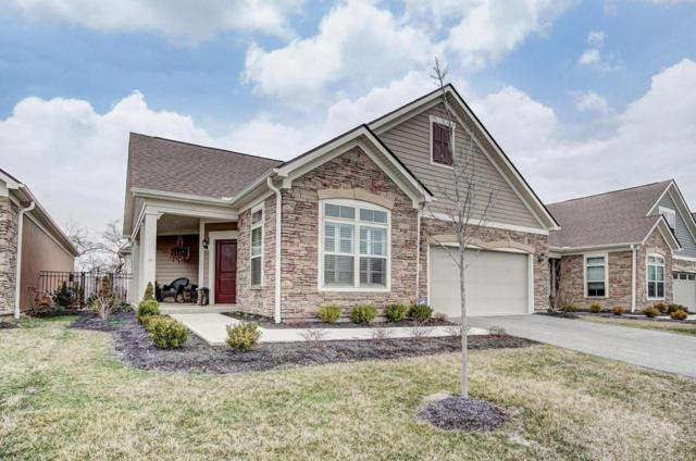 5602 Eventing Way, Hilliard, OH 43026 (MLS #218008462) :: Julie & Company