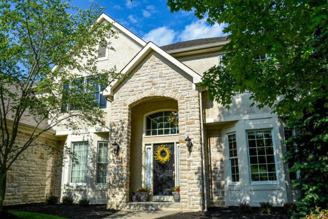 7820 Windy Hill Court, Dublin, OH 43016 (MLS #218008481) :: The Columbus Home Team