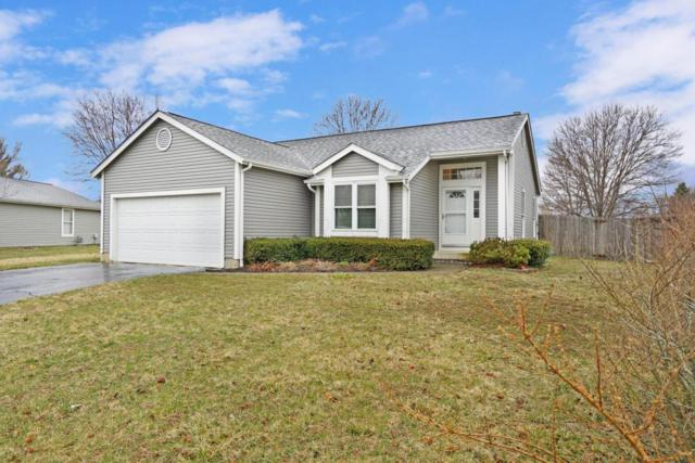 6160 Shelba Drive, Galloway, OH 43119 (MLS #218008604) :: Signature Real Estate