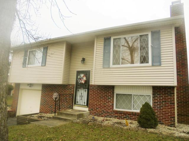 4099 Platte Avenue, Groveport, OH 43125 (MLS #218008853) :: Signature Real Estate