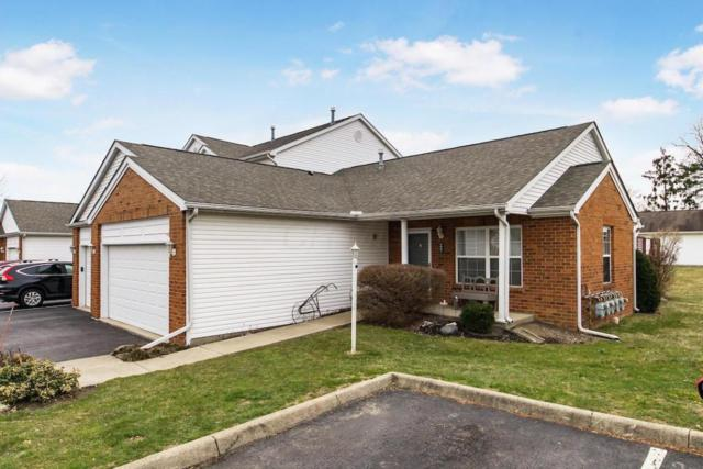 3061 Ravine Pointe Drive, Columbus, OH 43231 (MLS #218008925) :: Julie & Company