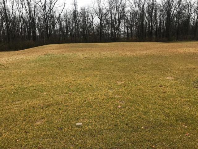 2001 Liberty Bluff Drive, Delaware, OH 43015 (MLS #218009166) :: Berkshire Hathaway HomeServices Crager Tobin Real Estate