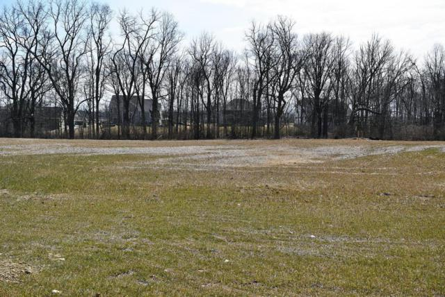 1899 Liberty Bluff Drive Lot #5896, Delaware, OH 43015 (MLS #218010060) :: Berkshire Hathaway HomeServices Crager Tobin Real Estate