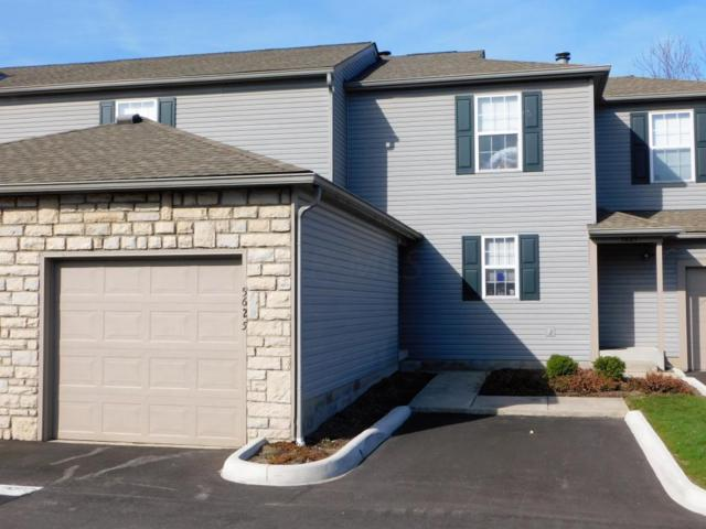 5625 Wigmore Drive, Columbus, OH 43235 (MLS #218010162) :: Julie & Company