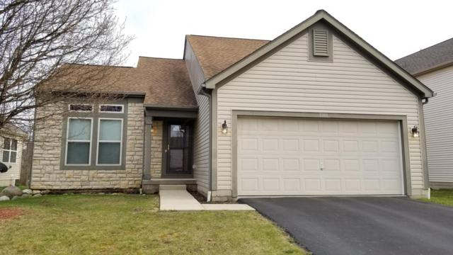 8301 Olympus Lane, Blacklick, OH 43004 (MLS #218010346) :: RE/MAX ONE