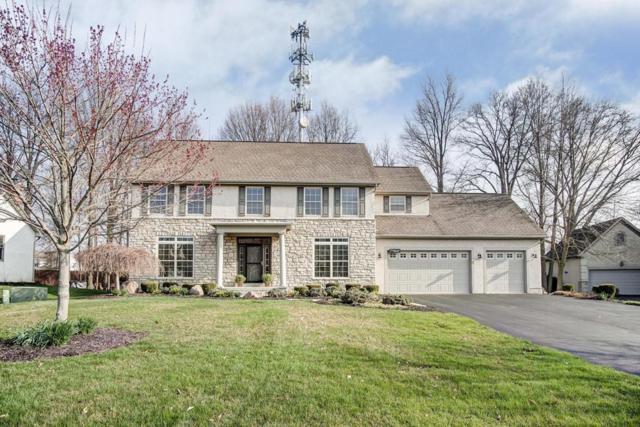 7293 Hawksbeard Drive, Westerville, OH 43082 (MLS #218011408) :: CARLETON REALTY