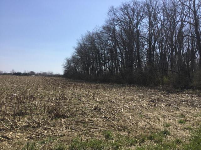 0 Graham Road, Ashville, OH 43103 (MLS #218011418) :: The Mike Laemmle Team Realty