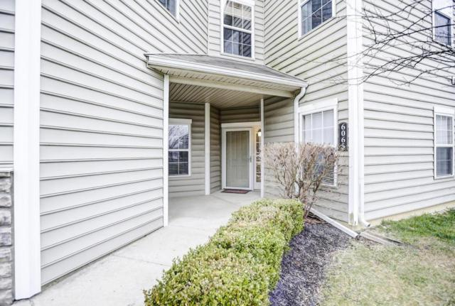 6065 Sowerby Lane, Westerville, OH 43081 (MLS #218011480) :: Julie & Company
