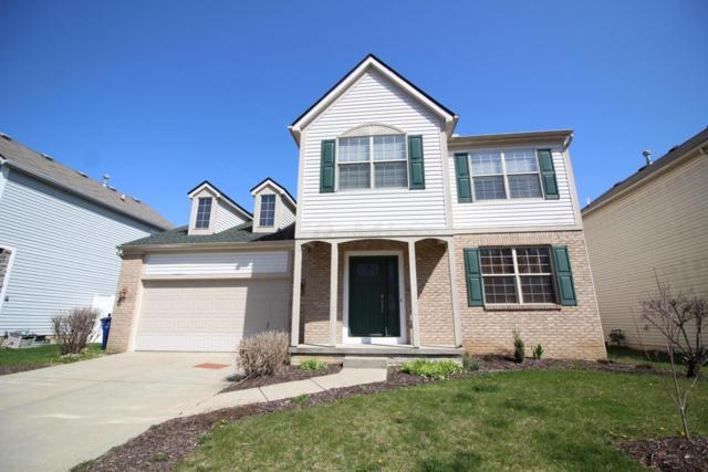3876 Highland Bluff Drive, Groveport, OH 43125 (MLS #218011765) :: RE/MAX ONE