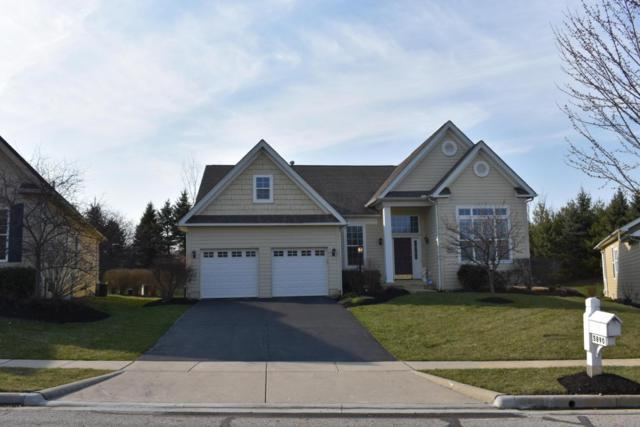5890 Tournament Drive, Westerville, OH 43082 (MLS #218012163) :: RE/MAX ONE