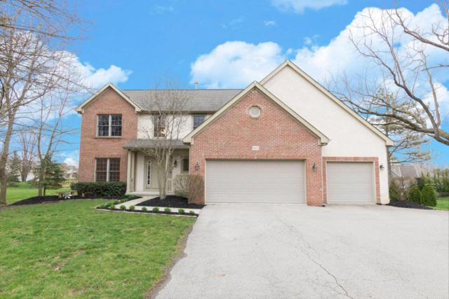 6075 S Old State Road, Lewis Center, OH 43035 (MLS #218012174) :: Exp Realty
