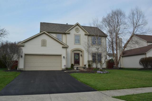 1247 Briarshore Way, Lewis Center, OH 43035 (MLS #218012370) :: Exp Realty