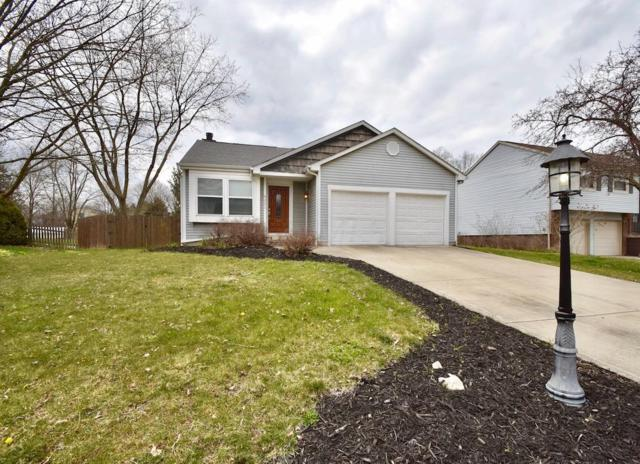 4251 Kelnor Drive, Grove City, OH 43123 (MLS #218012556) :: Julie & Company