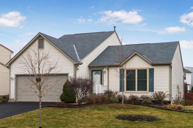 4958 Hilliard Green Drive, Hilliard, OH 43026 (MLS #218012558) :: CARLETON REALTY