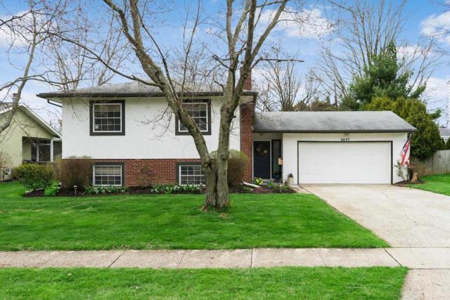6647 Schreiner Street W, Worthington, OH 43085 (MLS #218012590) :: Exp Realty